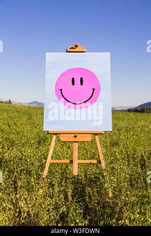 Smiley Face painting on easel in green field. Happiness, creativity, good mood, mental health concepts. - Stock Photo