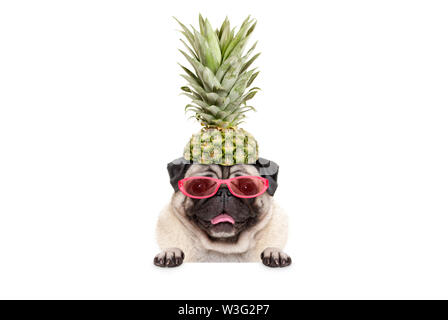 portrait of cute funny frolic summer pug puppy dog with sunglasses and pineapple hat, hanging with paws on blank white banner, isolated - Stock Photo