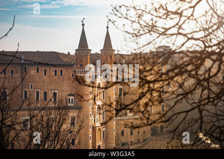 Urbino Marche Italy. Ducal Palace or Palazzo Ducale from the hill. Blurred tree branches in foreground - Stock Photo