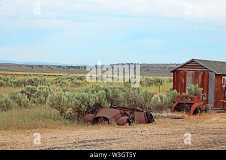 Vintage car bodies rust in the Eastern Oregon desert. - Stock Photo