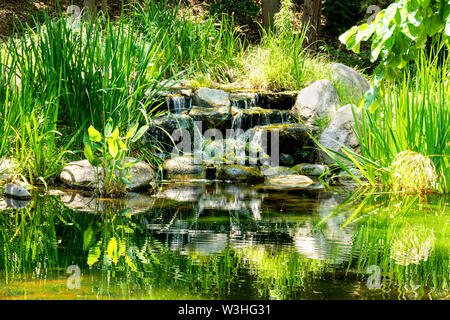 Tranquil garden waterfall with the water flowing gently over the rocks into a pond and surrounded by greenery. - Stock Photo