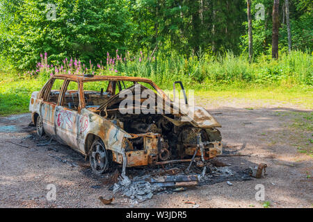 Abandoned burnt out car in the forest - Stock Photo