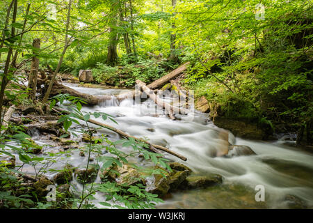 Water cascades over logs and rocks in a small picturesque stream and small waterfall, surrounded by lush green forest downstream from Walters Falls. - Stock Photo