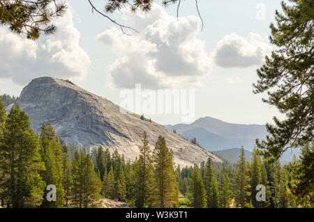 Lembert Dome. Yosemite National Park, California, USA. - Stock Photo