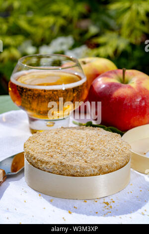 French cheeses collection, piece of fermented cow milk cheese Camembert au Calvados served with French dry apple cider outside in green garden close u - Stock Photo