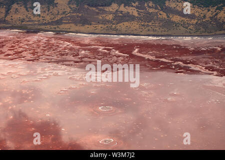 Photosynthesizing pigments of the blue-green bacteria cyanobacteria turns Lake Natron into amazing red color (aerial view) - Stock Photo