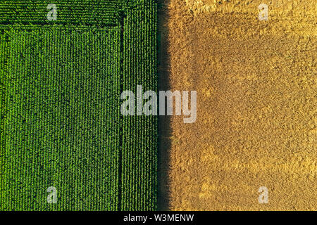 Agricultural field viewed from the top by a drone - Stock Photo