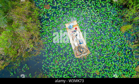 Airboat tour in Everglades National Park. Miami. Florida. USA. - Stock Photo