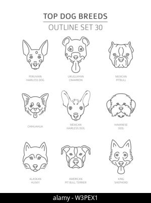 Top dog breeds. Pet outline collection. Vector illustration - Stock Photo
