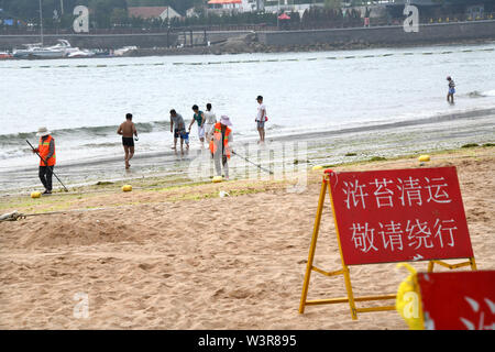 Qingdao, China's Shandong Province. 17th July, 2019. Workers clear algae along the beach in Qingdao, east China's Shandong Province, July 17, 2019. Credit: Li Ziheng/Xinhua/Alamy Live News - Stock Photo