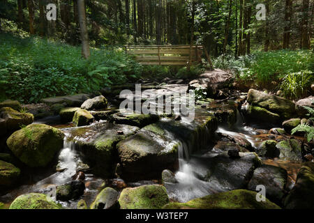 Stony creek bed in the forest with a small wooden bridge - Stock Photo