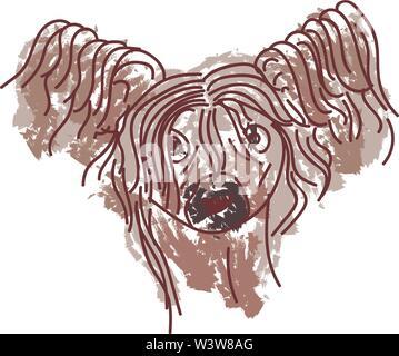 Crested dog, illustration, vector on white background. - Stock Photo