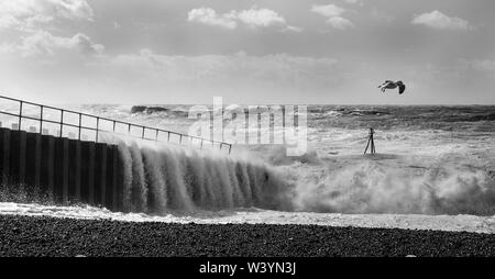 Dramatic stormy sea breaking against brighton marina black harbour wall, spray and waves high in the air, rough sea and a solitary seagull trying to s - Stock Photo