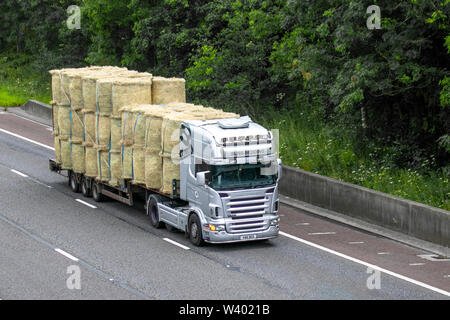 Bliss Bedding carrying straw bales; Heavy bulk haulage delivery trucks, lorry, transportation, truck, cargo, vehicle, delivery, transport, industry logistics, freight, on the M6 at Lancaster, UK - Stock Photo