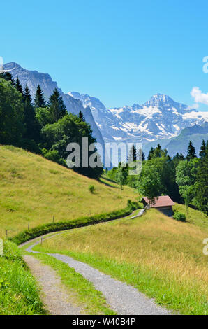 Narrow path in the hills near Lauterbrunnen in Swiss Alps leading to small wooden mountain hut. Photographed on a sunny summer day. Green hilly landscape. Mountains with snow on top in background. - Stock Photo