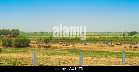 Rahim yar khan,Punjab,Pakistan-June 23,2019:homeless people living in flood areas,home less people living in small camps and huts. - Stock Photo