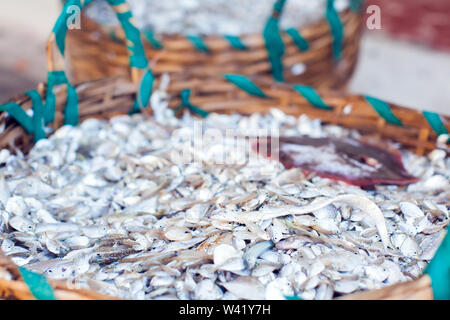 Big wooden basket filled with a lot of freshly caught fish - Stock Photo