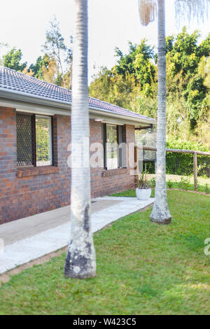 A view of a backyard of a house with two full grown palm trees and lush green grass landscape - Stock Photo