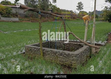 Old well with winch in the middle of onion field. Wall wells made of stones and mortar. Water source for irrigation of farmers' crops in the mountains - Stock Photo