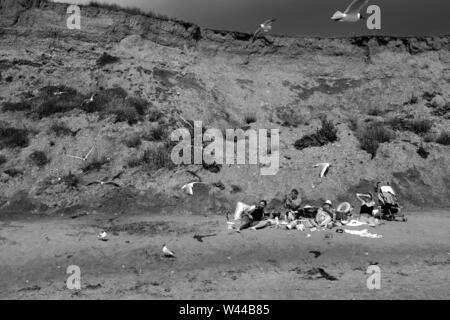 A group of friends having a picnic on the sandy beach surrounded by airborne scavenging seagulls on Compton Bay, Isle of Wight - Stock Photo