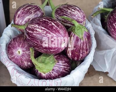 Zebra Eggplant Stock Photo