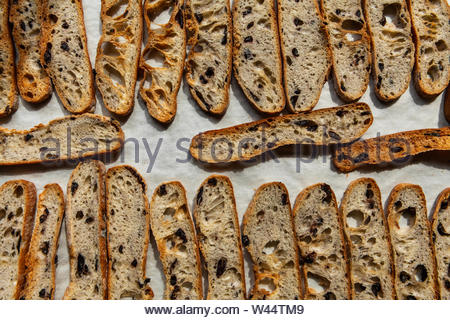 A top down view of fresh and crusty French baguettes, warm bread fresh from the oven on parchment paper, staple foods in a bakery