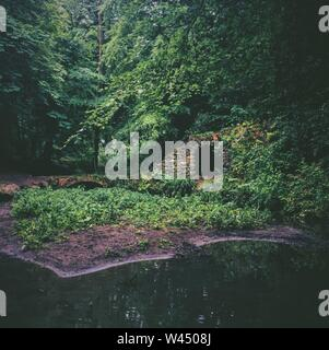 A pond in the forest near the tunnel and small bridge surrounded by trees - Stock Photo