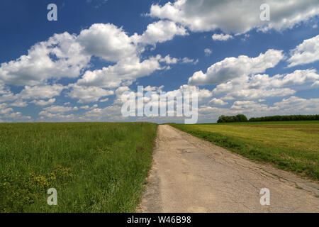 Field road among meadows and fields - Stock Photo