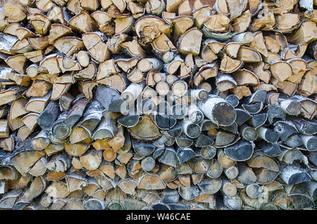 background of cut birch logs - Stock Photo