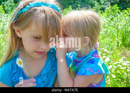 young Caucasian girl whispering a secret in daisy field - Stock Photo