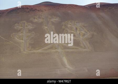 Paracas Candelabra Geoglyph in Southern Peru - Stock Photo