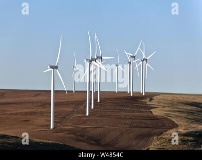 Electric generating wind turbines operating in freshly cultivated wheat field, early morning  light. - Stock Photo