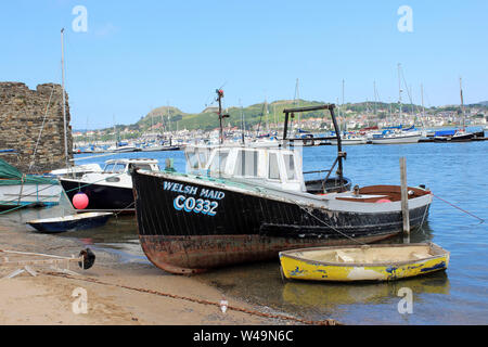 Small Fishing Boat 'Welsh Maid' at Conwy Quay, Conwy, Wales - Stock Photo