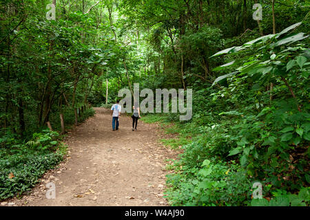 Man and woman exercising doing mountain trekking on one of the paths of Sabas Nieves, a place well known by visitors to the Avila mountain or Waraira - Stock Photo