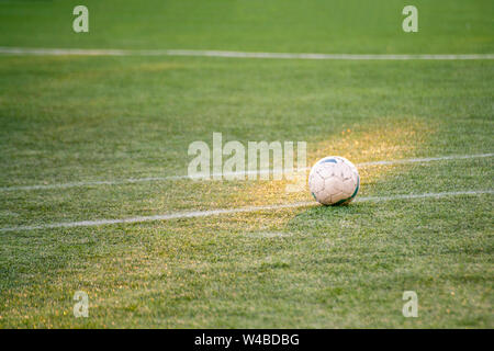 football soccer ball on the field of grasss - Stock Photo
