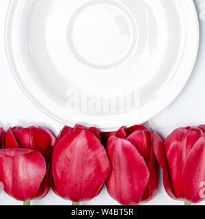White saucer stands on a white background next to multi-colored tulips. Closeup - Stock Photo