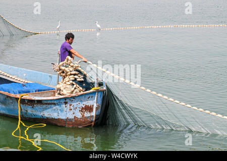 fishing boat rounding up fish in a net the Sea of Galilee, Israel - Stock Photo