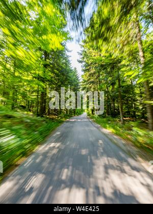 Green forest countryside speeding on road - Stock Photo