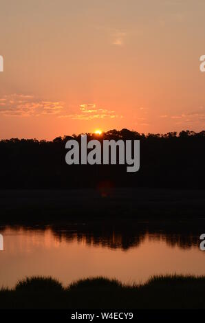 SOUTHERN PEACH SKIES A beautiful sunrise ascends above a forest off the Vernon river marsh in Savannah, Georgia - Stock Photo