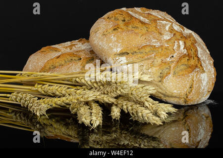 Group of two whole fresh baked rye wheat bread loaves with golden wheat ears isolated on black glass - Stock Photo