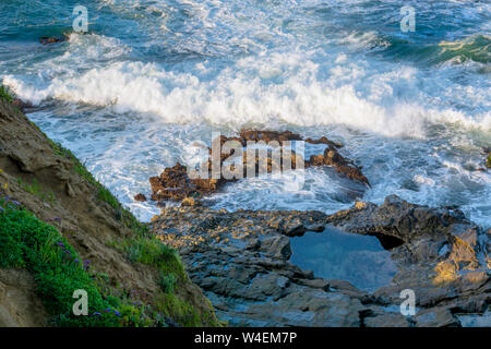 Early morning, high angle closeup view of a tide pool, ocean waves crashing against rocks and a cliff in Laguna Beach, California. - Stock Photo