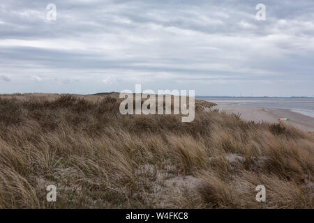 Europe Germany East Frisia North Sea Langeoog - A stormy morning on Langeoog - Stock Photo