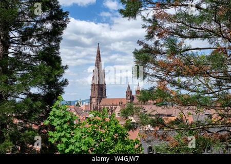 Freiburg Minster, Freiburg, Germany - Stock Photo