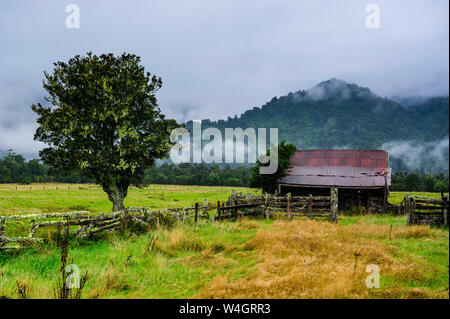 Old farm in a moody atmosphere, West Coast around Haast, South Island, New Zealand - Stock Photo