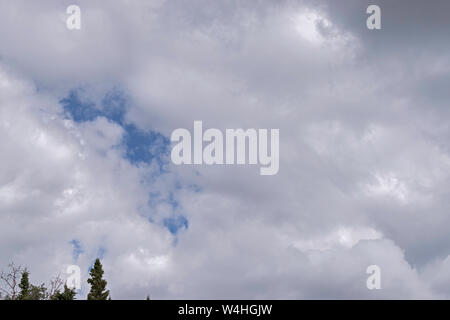 summer clouds gather over the forest near Fairbanks in Alaska showing an opening of blue sky over the tops of the trees - Stock Photo