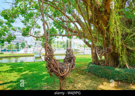 The swing of the tangled aerial roots of banyan, growing in garden of White Temple (Wat Rong Khun), Chiang Rai, Thailand - Stock Photo
