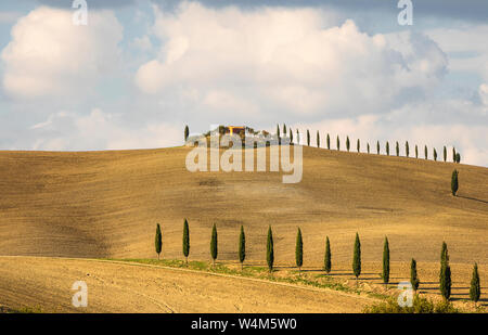 Amazing clouds and alley of cypress trees near small farm house. Italian countryside. Tuscany. Italy. Europe - Stock Photo
