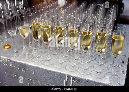 Photo of many glass wine glasses with wine - Stock Photo