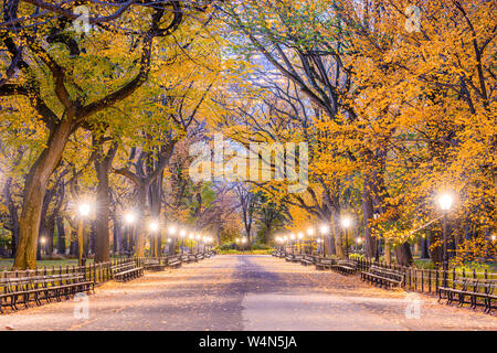 Central Park at The Mall in New York City during autumn dawn. - Stock Photo