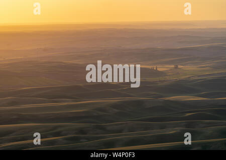Golden hour sunset aerial view of The Palouse region of Eastern Washington State, as seen from Steptoe Butte State Park, of the rolling farmland and h - Stock Photo